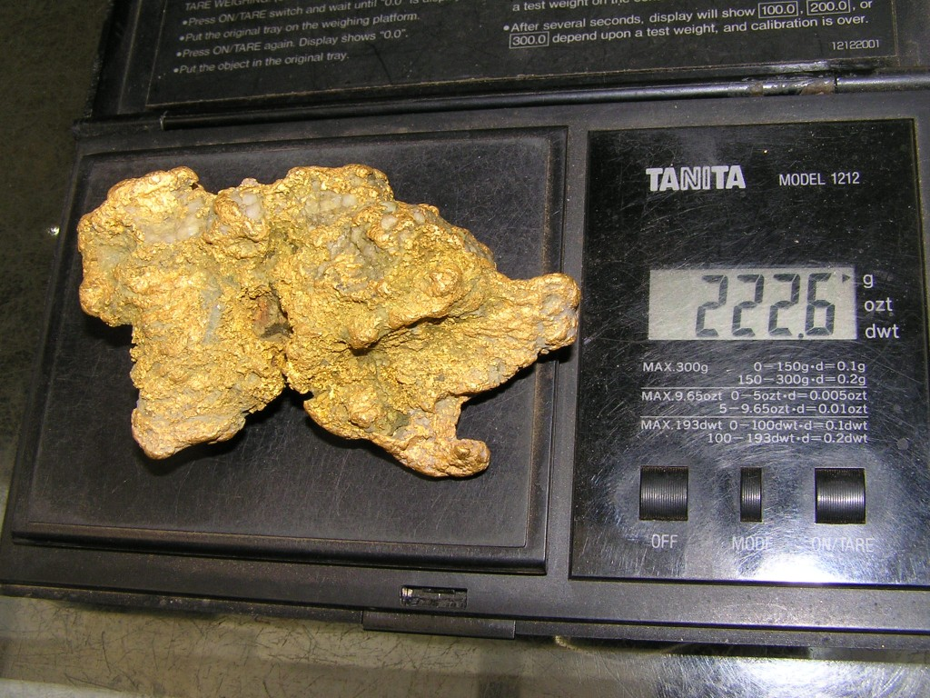 222.6g Gold Nugget